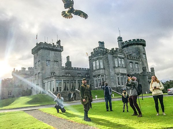 Foto Friday - a falcon flying by people outside a castle
