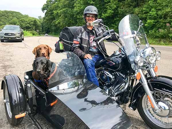 Foto Friday - a man on a motorcycle with dogs in a sidecar