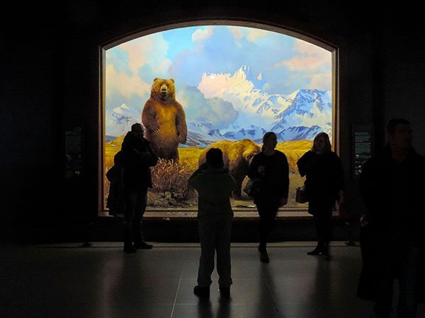 Foto Friday - people in front of a museum exhibit with a bear