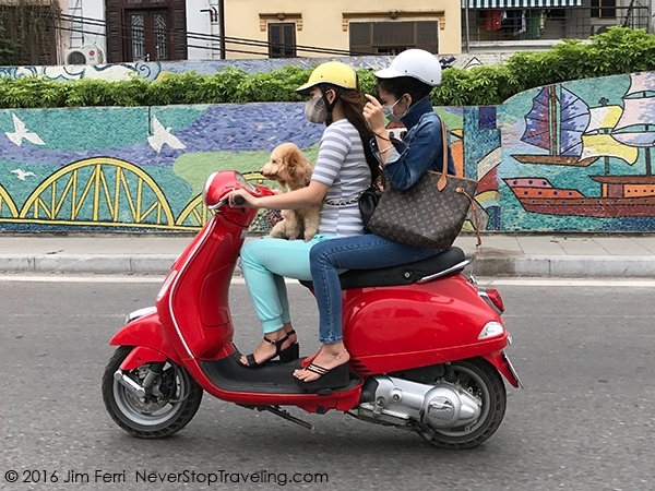 Foto Friday - a couple and a dog on a motor scotter