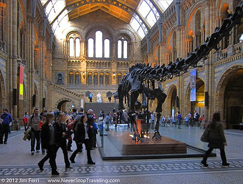 Museum of Natural History, London, England