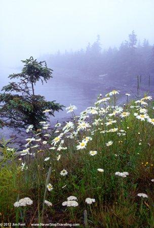 Coast, Nova Scotia, Canada