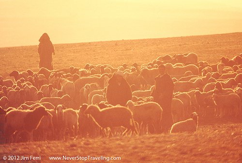 Foto Friday - Shepherds in the Morocco sountryside
