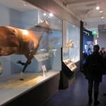 London S Museum Quarter South Kensington