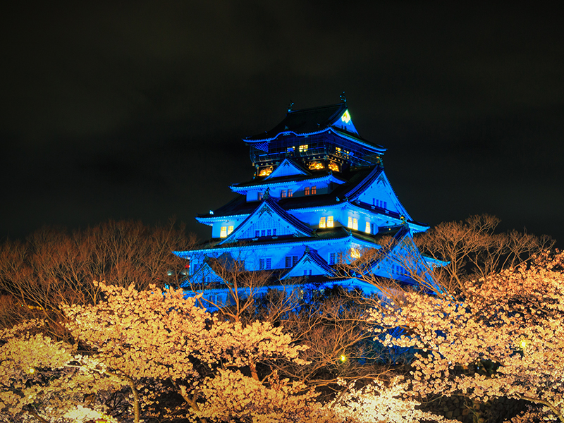 a castle at night in Japan