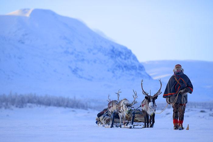 man leading reindeer in the snow top 10 sweden