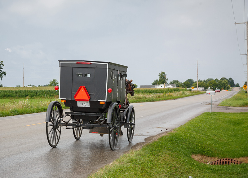 a buggy on a road in Indiana Amish cuntry