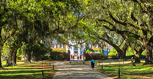 Charleston's Boone Hall Plantation