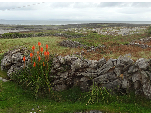 The Inishmore landscape