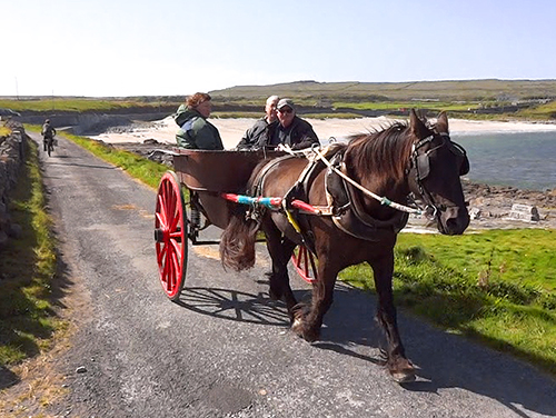 Pony and trap in Oatquarter Aran Islands