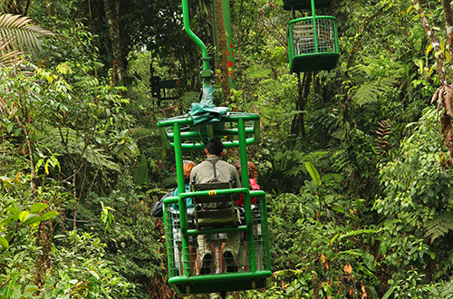 people on a chair lift over a jungle