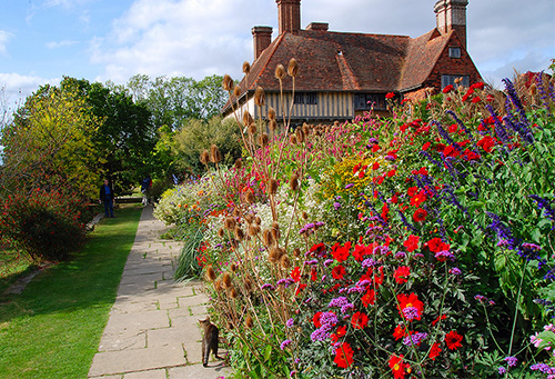 flowers by a large English house - home exchanges