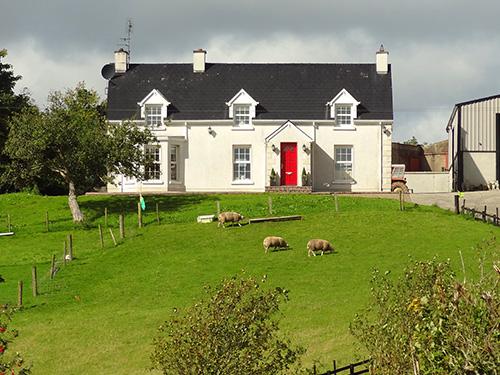 sheep by a house - farm stays