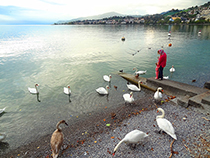 Lakeside in Montreux