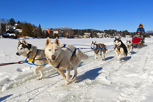 Dogsledding on Mirror Lake in New York / photo: Lake Placid CVB /Dave Schmidt