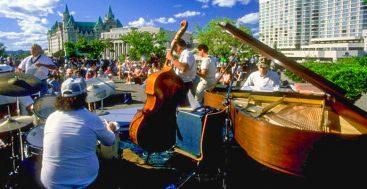 musicians in a park festival