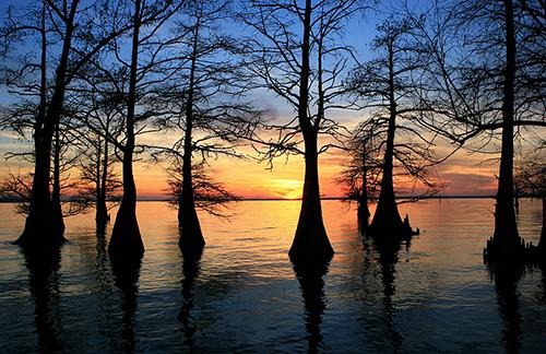 Sunset at Caddo Lake in Shreveport/ photo: Johnny Wessler
