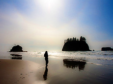 Olympic National Park / photo: Esther Lee/Flickr