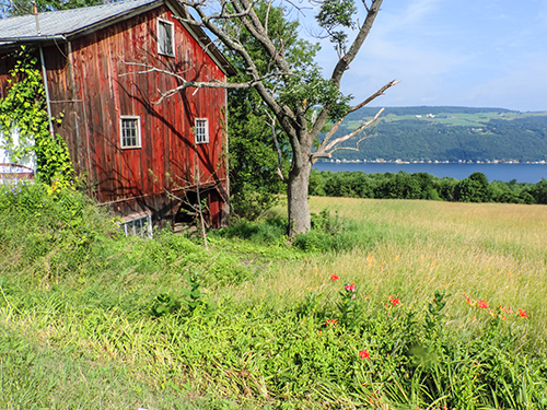 The countryside overlooking Keuka Lake