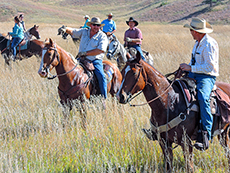Cowboys on horseback at The Buffalo Roundup