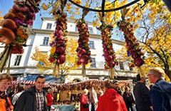 oniones tied together hanging at a fair in Europe