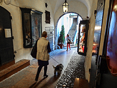 A woman walking a dog through an arcaded walkway