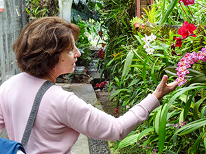 a woman looking at an orchid in Cuenca