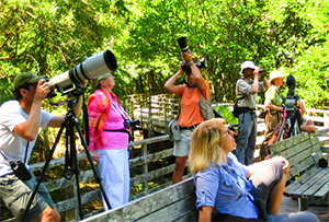 people with cameras and telescopes in Florida