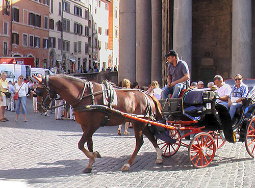 a horsedrawn carriage
