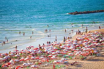 umbrellas on a beach in Tel Aviv