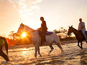 horseback riding on a Caribbean beach