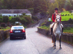 A rental car in Ireland passing a horse