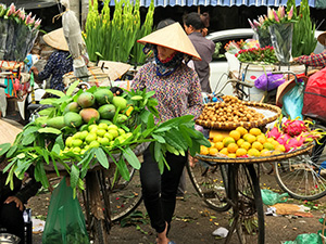 a woman street vendor in Hanoi