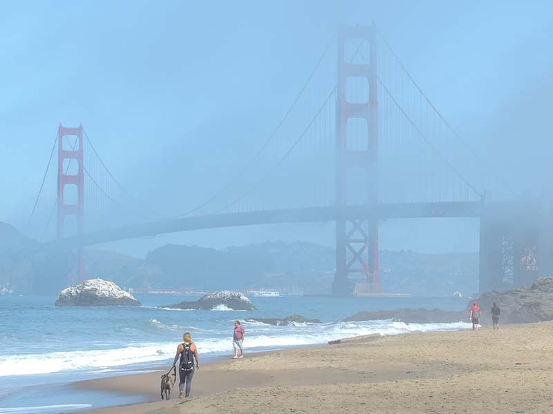 the Golden Gate Brisge in San Francisco
