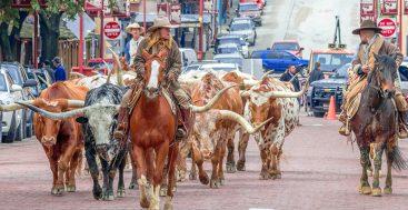 Road Trip: Texas's Chisholm Trail