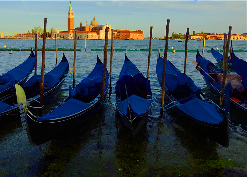 gondolas at their moorings, Venice, Italy