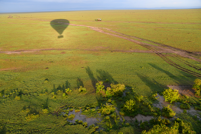 shadow of a hot-air balloon over Maasai Mara on safari in kenya