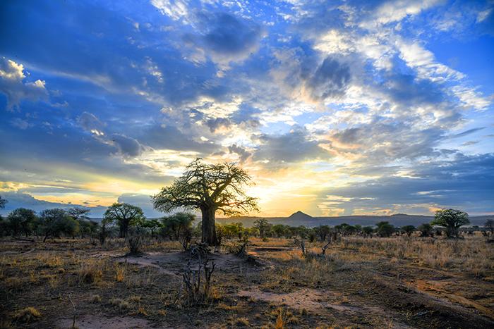 sunset on a plain in Tanzania