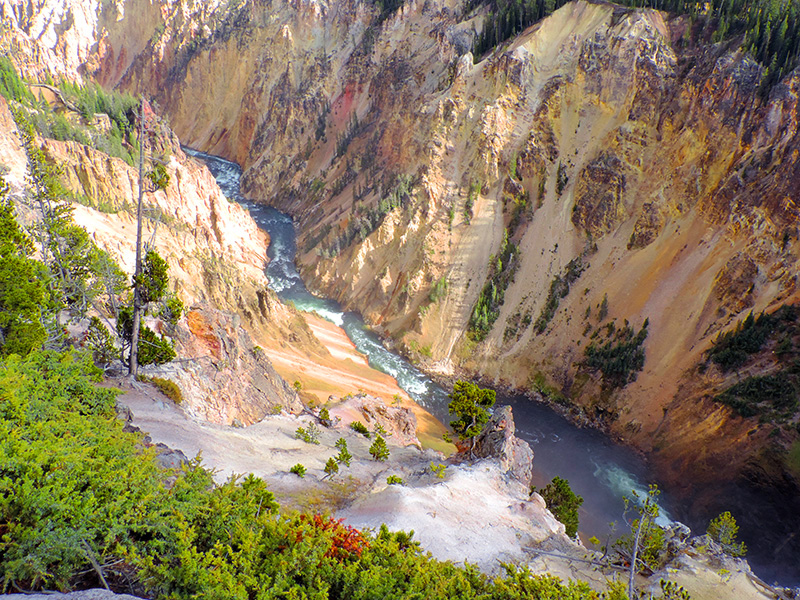 a river in a canyon hot springs seen on a Yellowstone family vacation