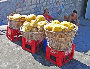 men selling sponges