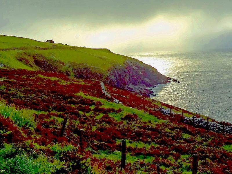 fog on cliffs along the ocean on the Dingle Peninsula - Dingle Ireland