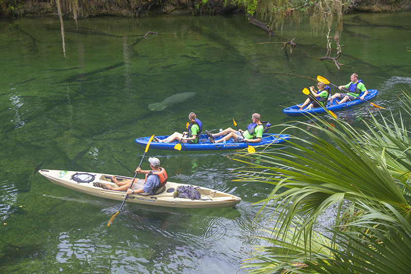 Kayakers in a Florida feshwater spring