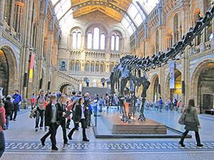people walking past a dinosaur skeleton in a museum