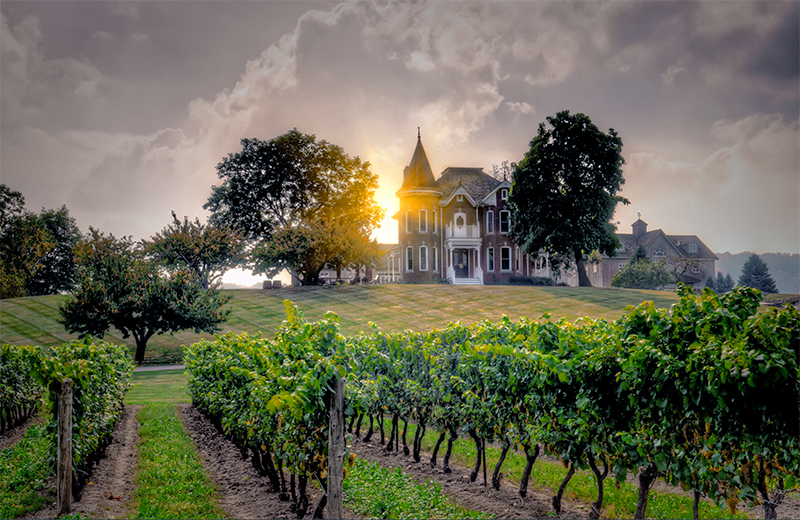 a winery at sunset