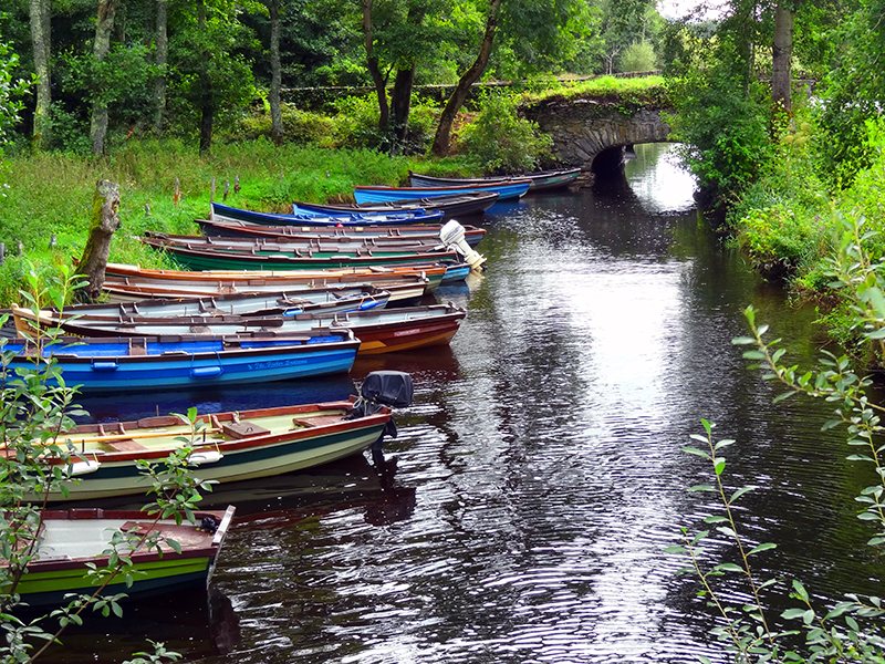 boats in a stream
